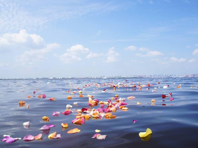 7月26日(木)海洋散骨と手元供養のセミナー開催のお知らせ