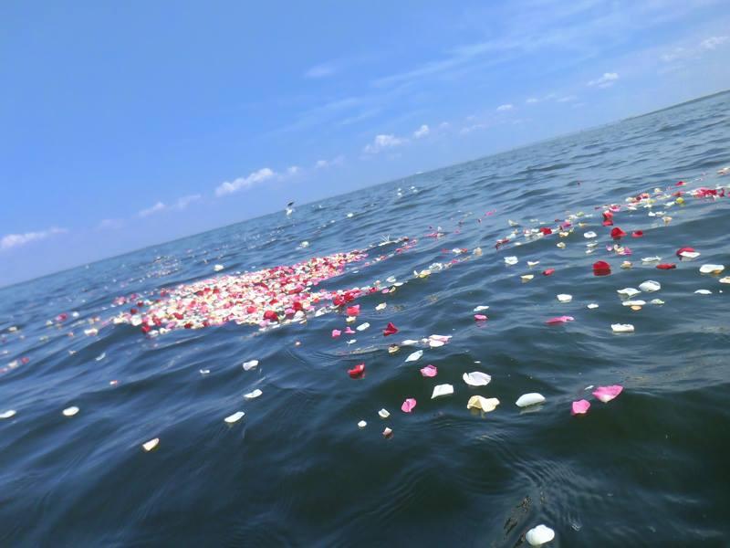 散骨・海洋葬ネットに掲載されました。
