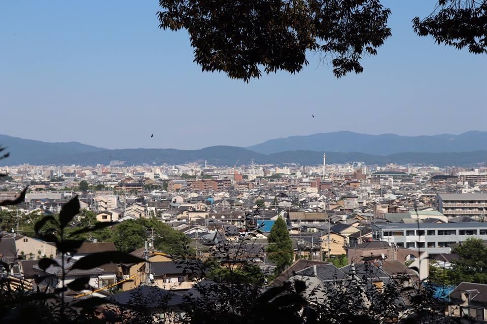 京都へ引取と打ち合わせに行きました