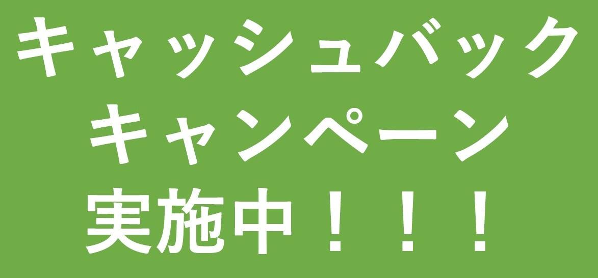 【体験クルーズ】キャッシュバックキャンペーン実施中!